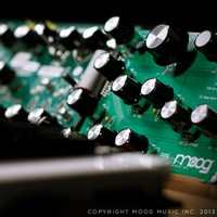 Moog's upcoming analog synth