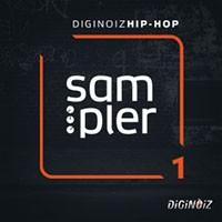 Diginoiz Hip Hop Sampler 1