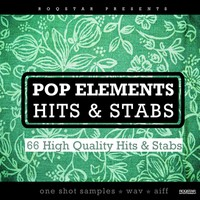 Roqstar Pop Elements Hits & Stabs