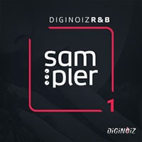 Diginoiz R&B Sampler