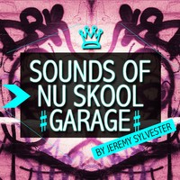 Producer Pack Sounds of Nu Skool Garage