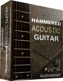 Audiowiesel Hammered Acoustic Guitar