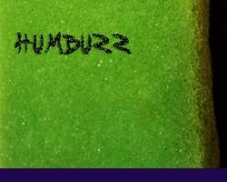 Detunized HumBuzz