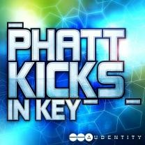 Audentity Phatt Kicks In Key