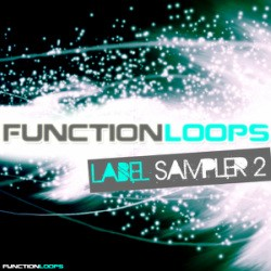 Function Loops Label Sampler 2