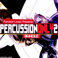 Function Loops Percussion Only 2