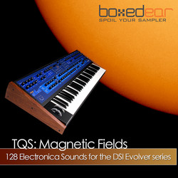 Boxed Ear TQS Magnetic Fields