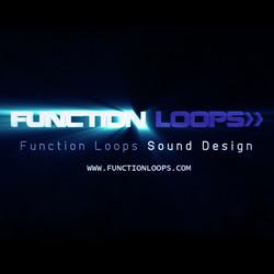 Function Loops