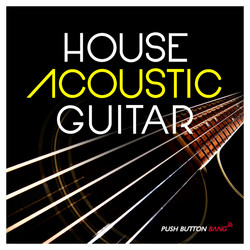 House Acoustic Guitar