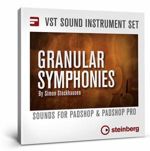 Steinberg Granular Symphonies