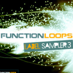 Function Loops Label Sampler 3