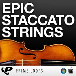 Prime Loops Epic Staccato Strings