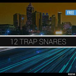 Roqstar 12 Trap Snares