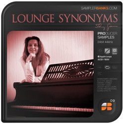 Samplerbanks Lounge Synonyms