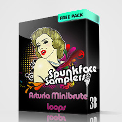 Arturia Minibrute Loops