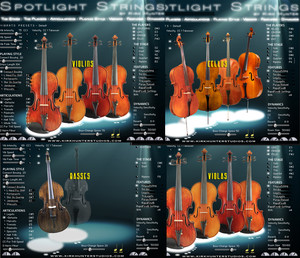 Kirk Hunter Spotlight Strings