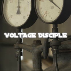Voltage Disciple