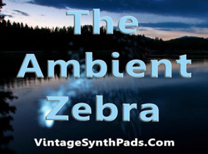 Vintage Synth Pads The Ambient Zebra