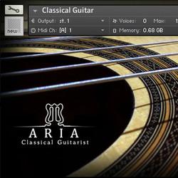 Aria Classical Guitarist
