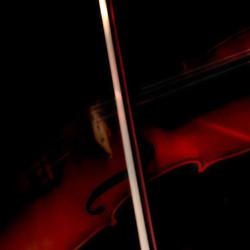 Aria Violinist