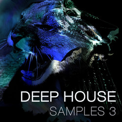 Spunkface Samplers Deep House Samples 3
