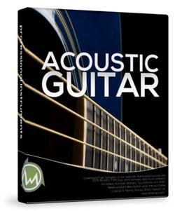 ThaLoops TLi Acoustic Guitar