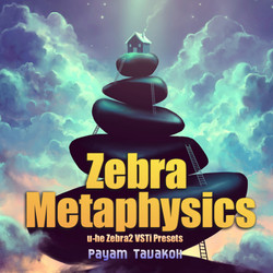 Zebra Metaphysics