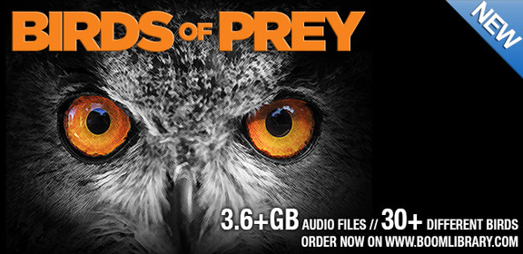 BOOM Library Birds of Prey