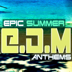 Function Loops Epic Summer EDM Anthems