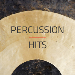 Spaectrum Arts Percussion Hits