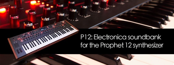 Boxed Ear P12 for DSI Propher 12