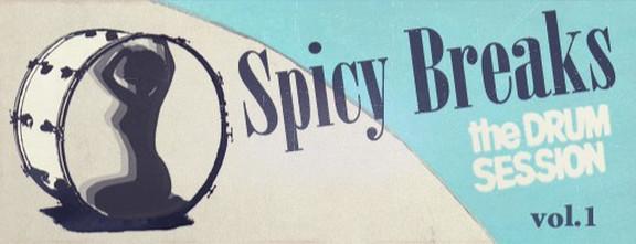 Patchbanks Spicy Breaks Vol.1