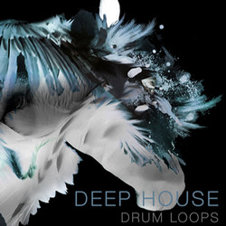 Spunkface Samplers Deep House Drum Loops