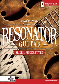 In Session Audio Resonator Guitar