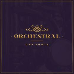 Diginoiz Orchestral One Shots