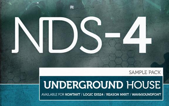 NDS-4 Underground House