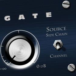 Bob Perry Audio Gate