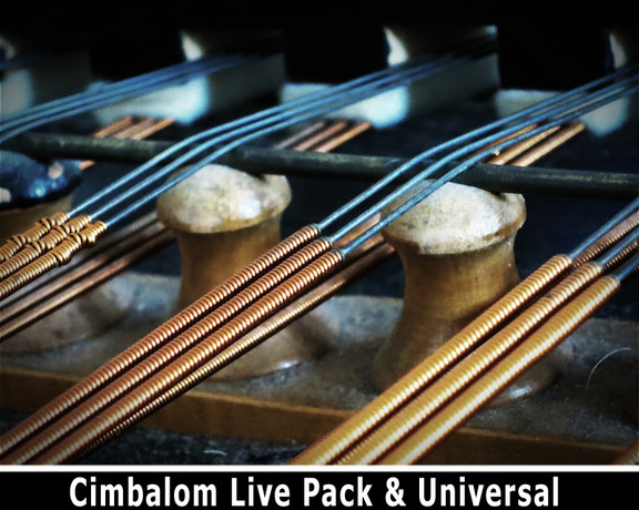 Detunized Cimbalom