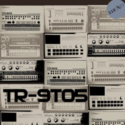 Raw Loops TR-9to5