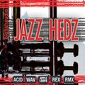 Big Fish Audio Jazz Hedz: Acid Jazz Download Pak