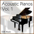 DSK Acoustic Pianos Vol. 1