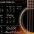DSK AkoustiK GuitarZ