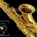 DVS Saxophone v1.2