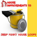 Loopmasters House Improvements v1