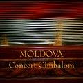 Precisionsound Moldova Concert Cimbalom