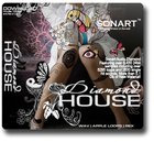 Sonart Audio Diamond House