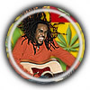 Splurgo Audio Reggae Guitar Loops