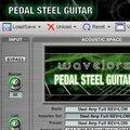 Wavelore Pedal Steel Guitar