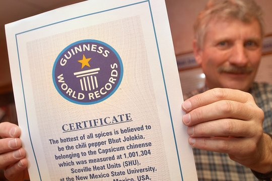 Guinness World Record certificate for the world's hottest chili pepper Bhut Jolokia