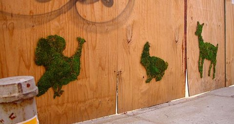 Moss animals by Edina Tokodi